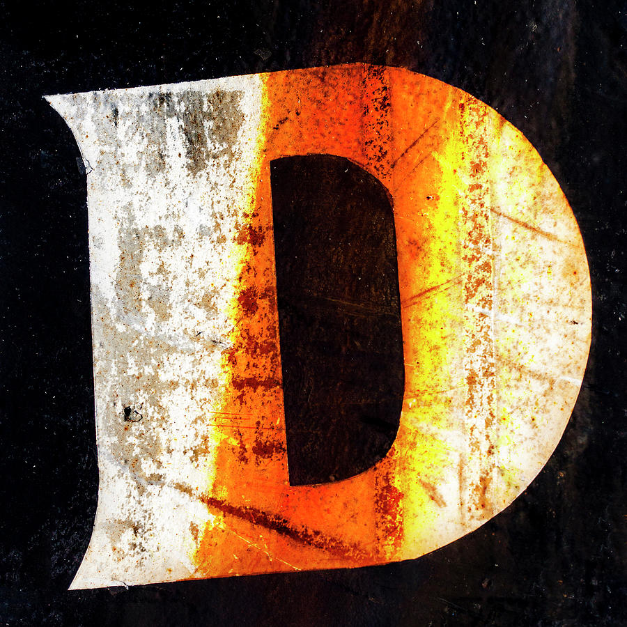 Letter Photograph - Letter D Squared by Carol Leigh