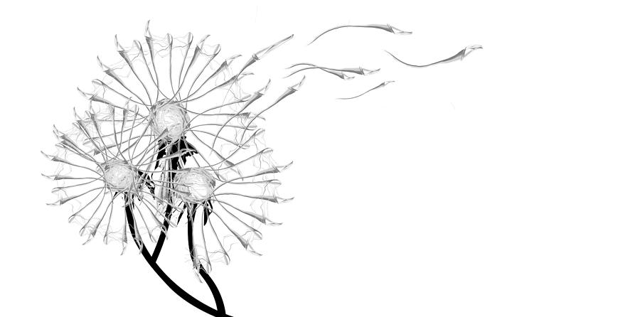 Dandylion Digital Art - Letting Go Being Free by Aiden Galvin
