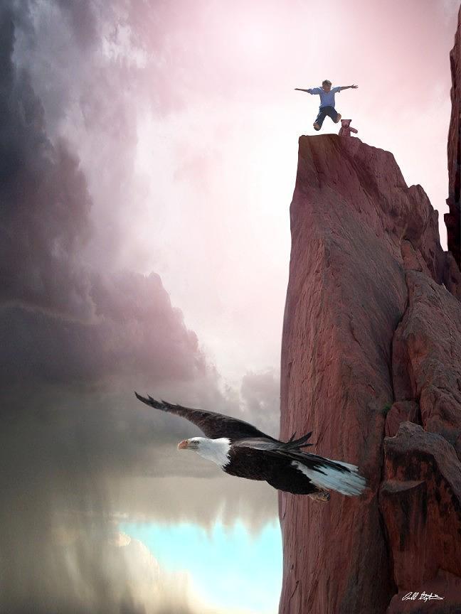 Eagles Digital Art - Letting Go by Bill Stephens