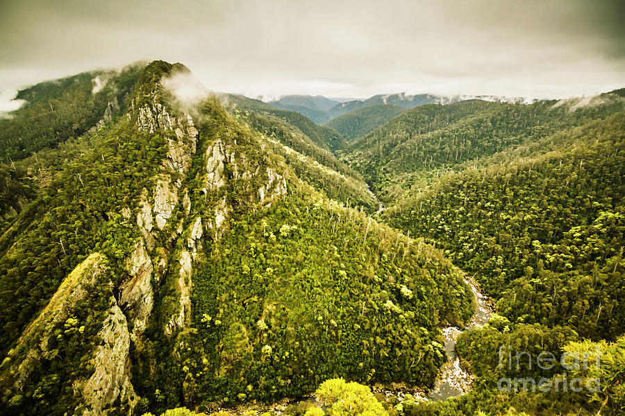Nature Photograph - Leven Canyon Reserve Tasmania by Jorgo Photography - Wall Art Gallery