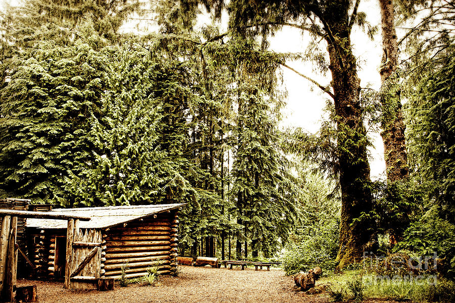 Lewis and Clarks Fort Clatsop in the Old Growth Forest Photograph by Lincoln Rogers