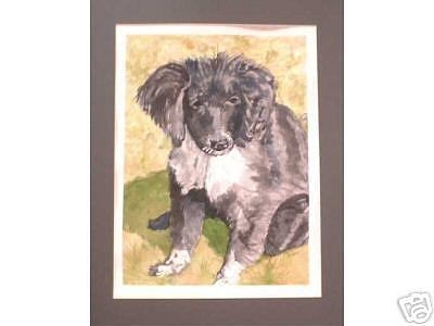 Black And White Dog Painting - Lexi by Ladonna Idell