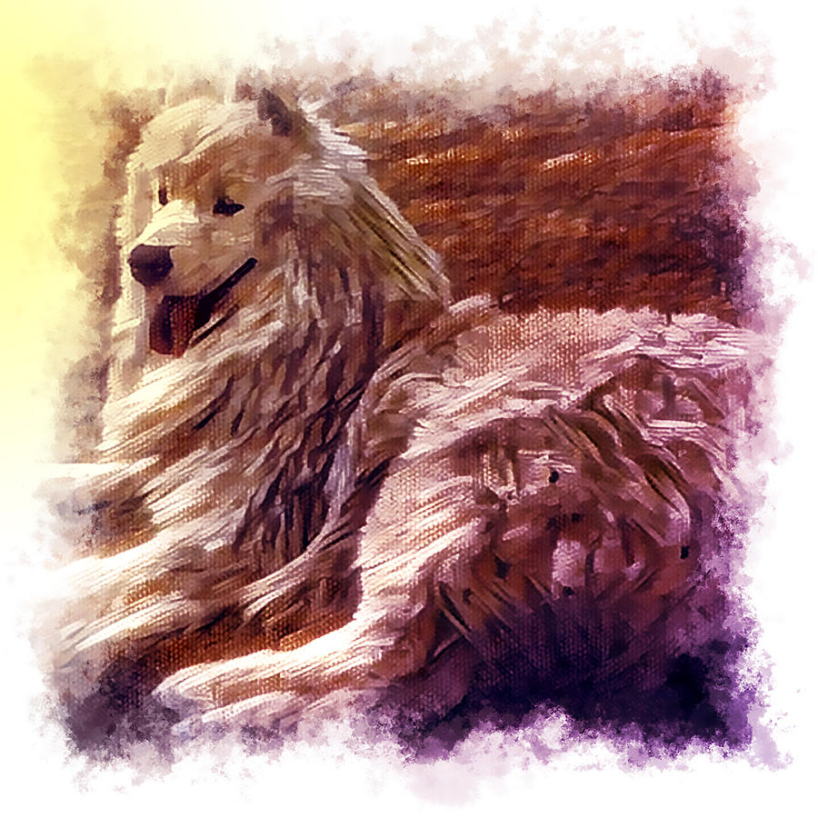 Dog Photograph - Lezhu by Ivan Gomez
