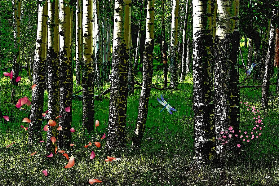 Life Among the Aspens by Tranquil Light Photography