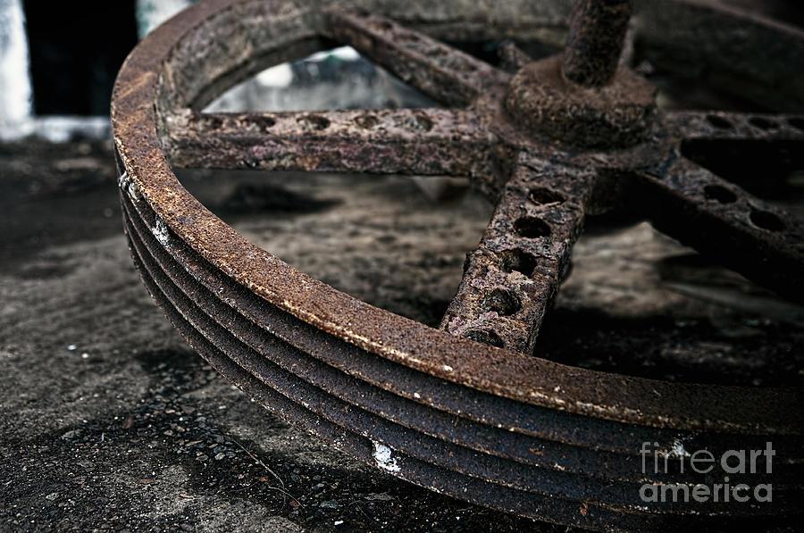 Cuba Photograph - Life Circle by Jose Rey