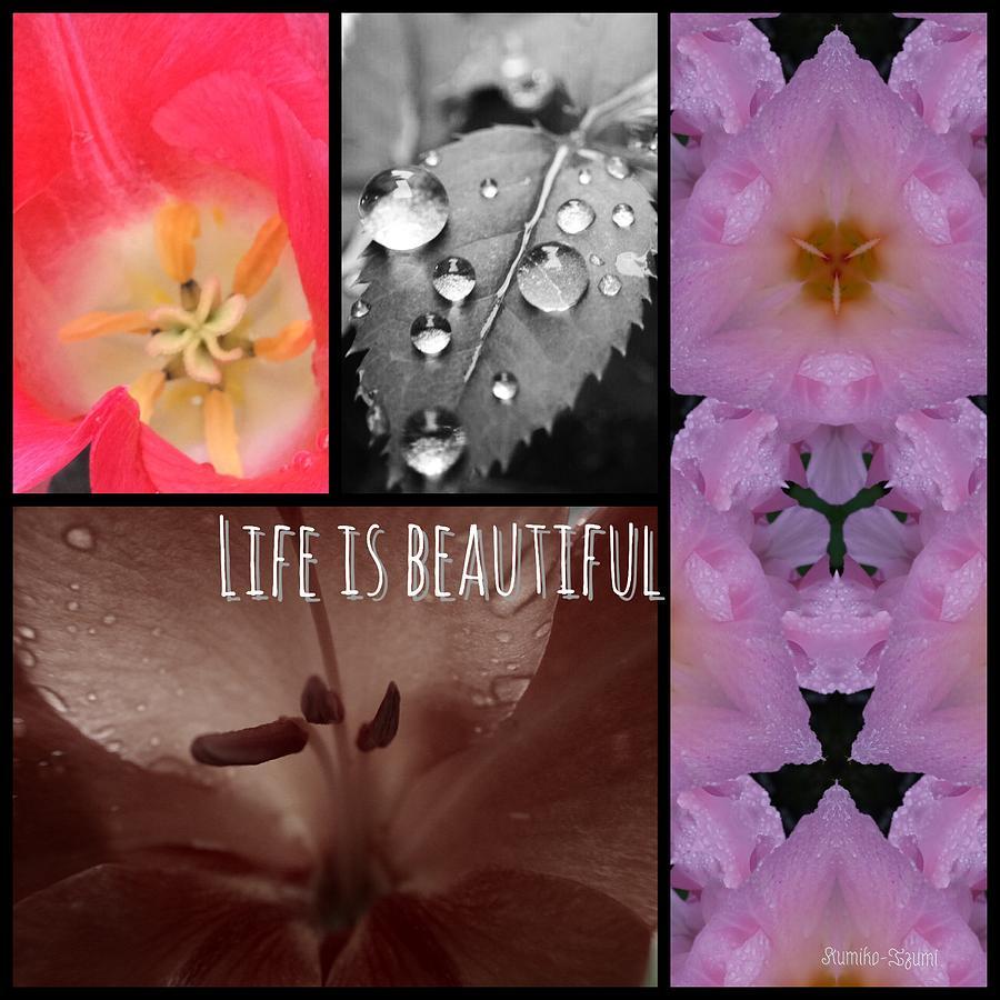 Flower Photograph - Life is beautiful  by Kumiko Izumi