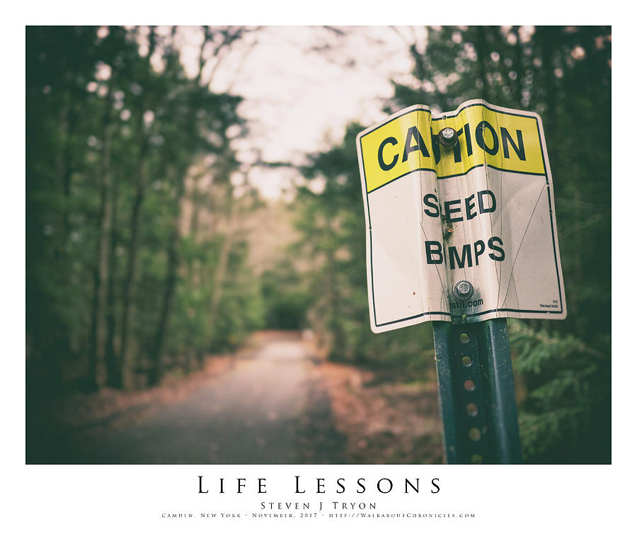 Friends Photograph - Life Lessons by Steven Tryon