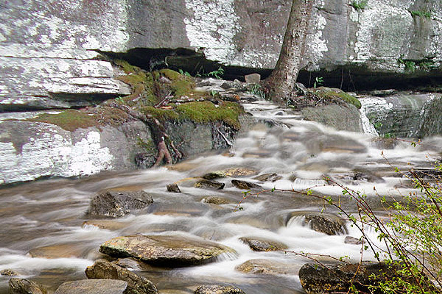 River Photograph - Lifes Forks by Jason Stephenson