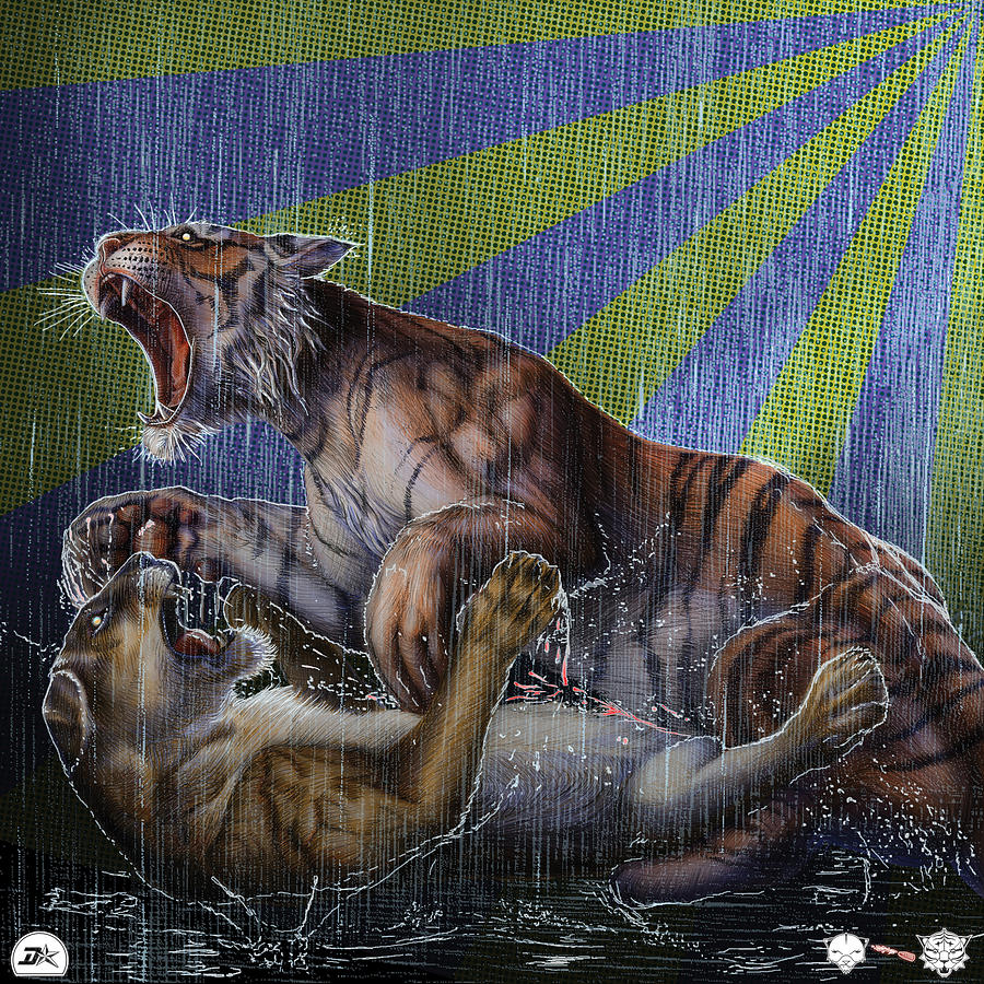 Lioness Drawing - Liger  Release by David Starr