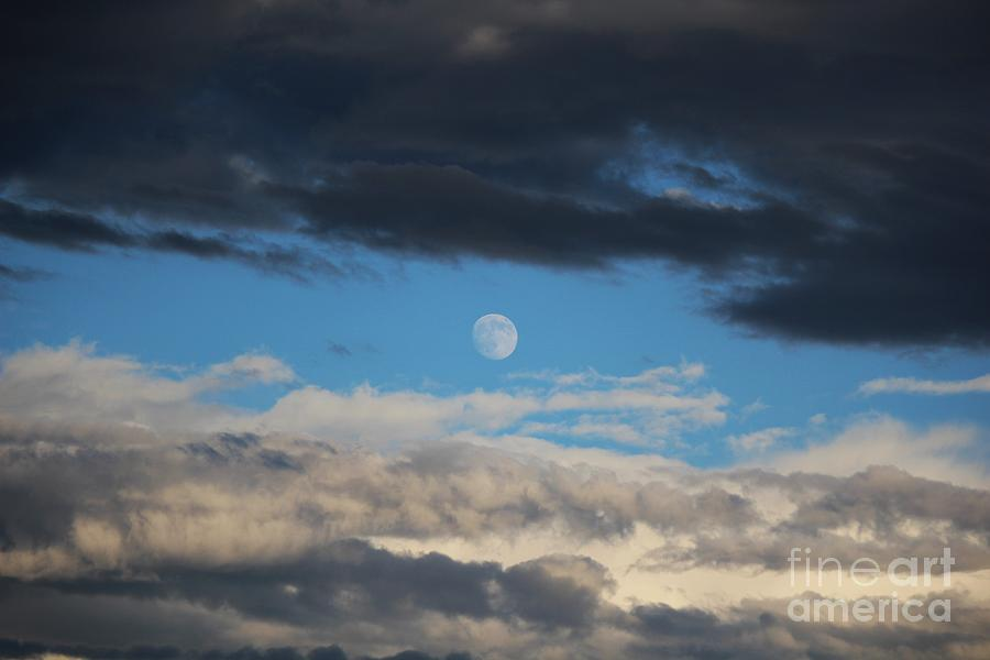 Moon Photograph - Light And Dark Moon  by Colleen Snow