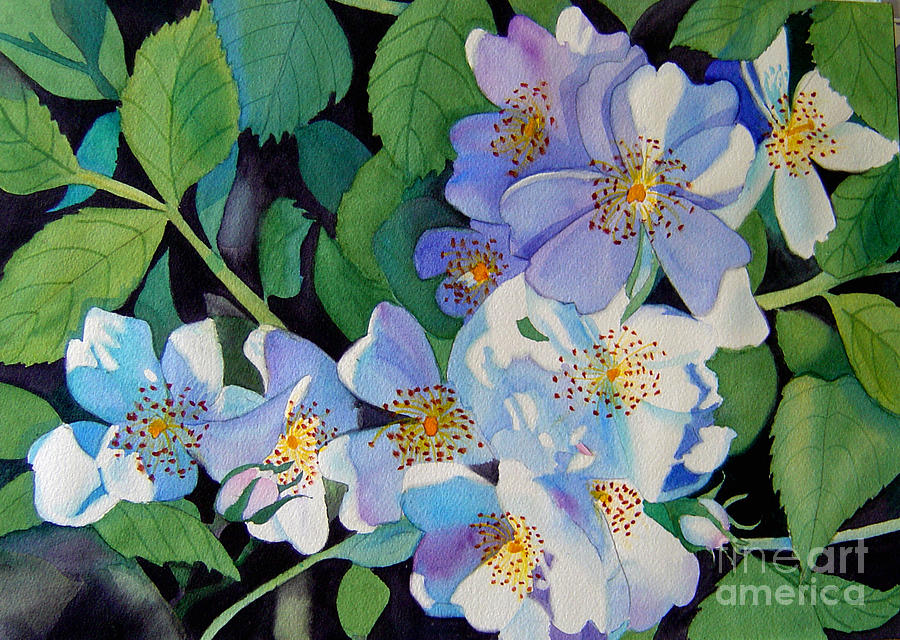 Flower Painting - Light And Shadow - White Blossoms by Teresa Boston