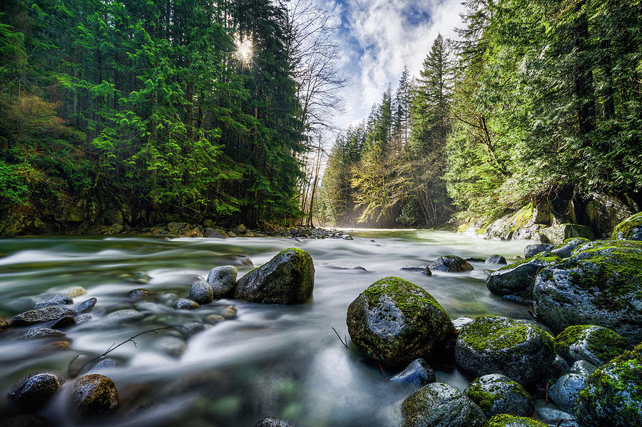 Tye River Photograph - Light Around The Bend by Ron Ludwig