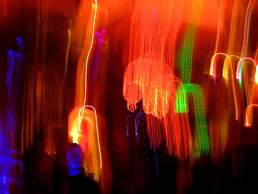 Abstract Photograph - Light Falling by Elizabeth Hoskinson