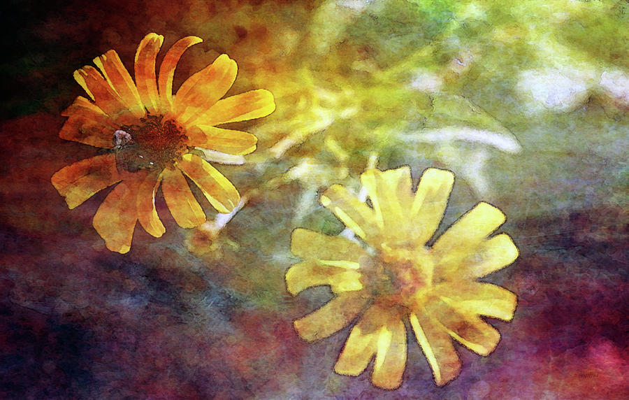 Impression Photograph - Light From Behind 5064 Idp_2 by Steven Ward