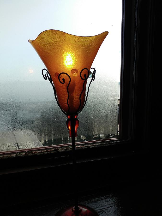 Light in the Dark by Newel Hunter