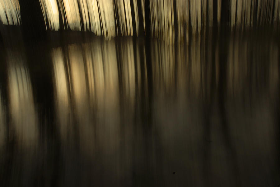 Photo Photograph - Light Of Night by Daniel Choiniere