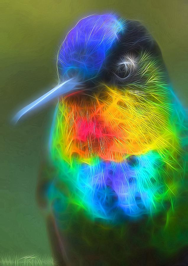 Hummingbird Digital Art - Light of the hummingbird by Susanna Shaposhnikova
