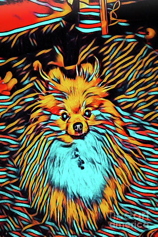 Light Up Your Life Pomeranian by Gary Keesler