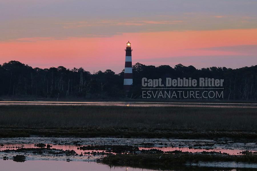Lighthouse Photograph - Lighthouse 1386 by Captain Debbie Ritter