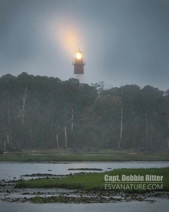 Lighthouse Photograph - Lighthouse 7990 by Captain Debbie Ritter
