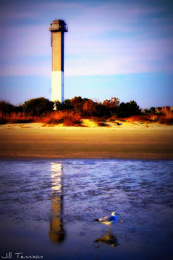 Landscape Photograph - Lighthouse And The Seagull by Jill Tennison
