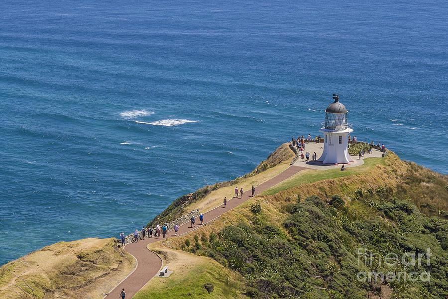 Lighthouse Cape Reigna New Zealand Photograph