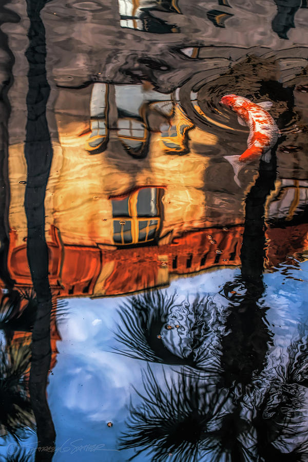 Lightner Koi Pond reflection I by Stacey Sather