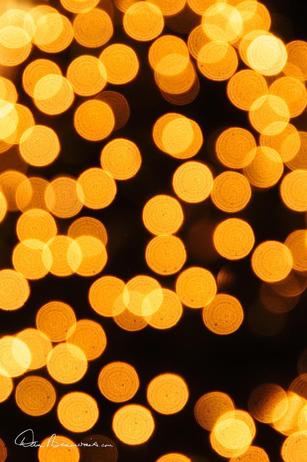 Lights 0124 Photograph