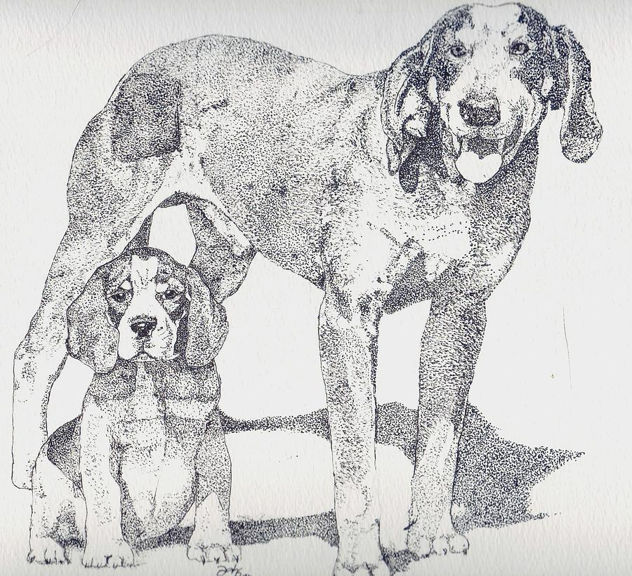 Bluetick Coonhound Drawing - Like Father Like Son by Debra Sandstrom