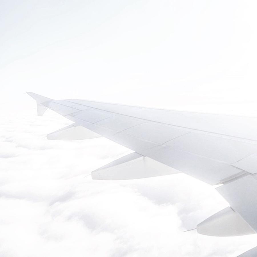 Flight Photograph - Like Milk by Aleck Cartwright
