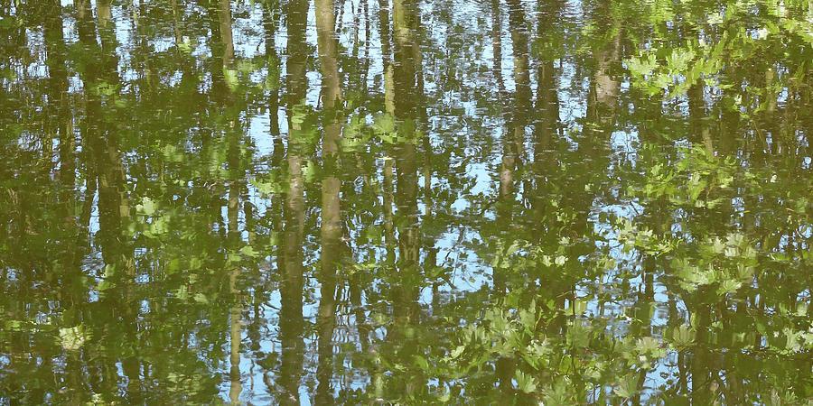 Landscape Photograph - Like Monet by Rainer Stark