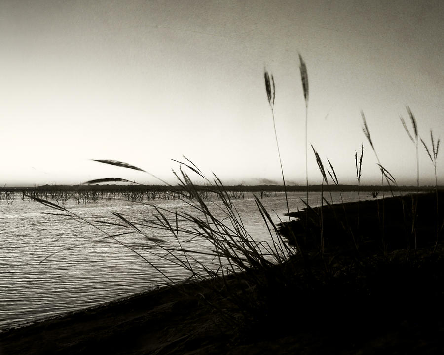 Lake Photograph - Like Morning In Your Eyes by Mike McMurray