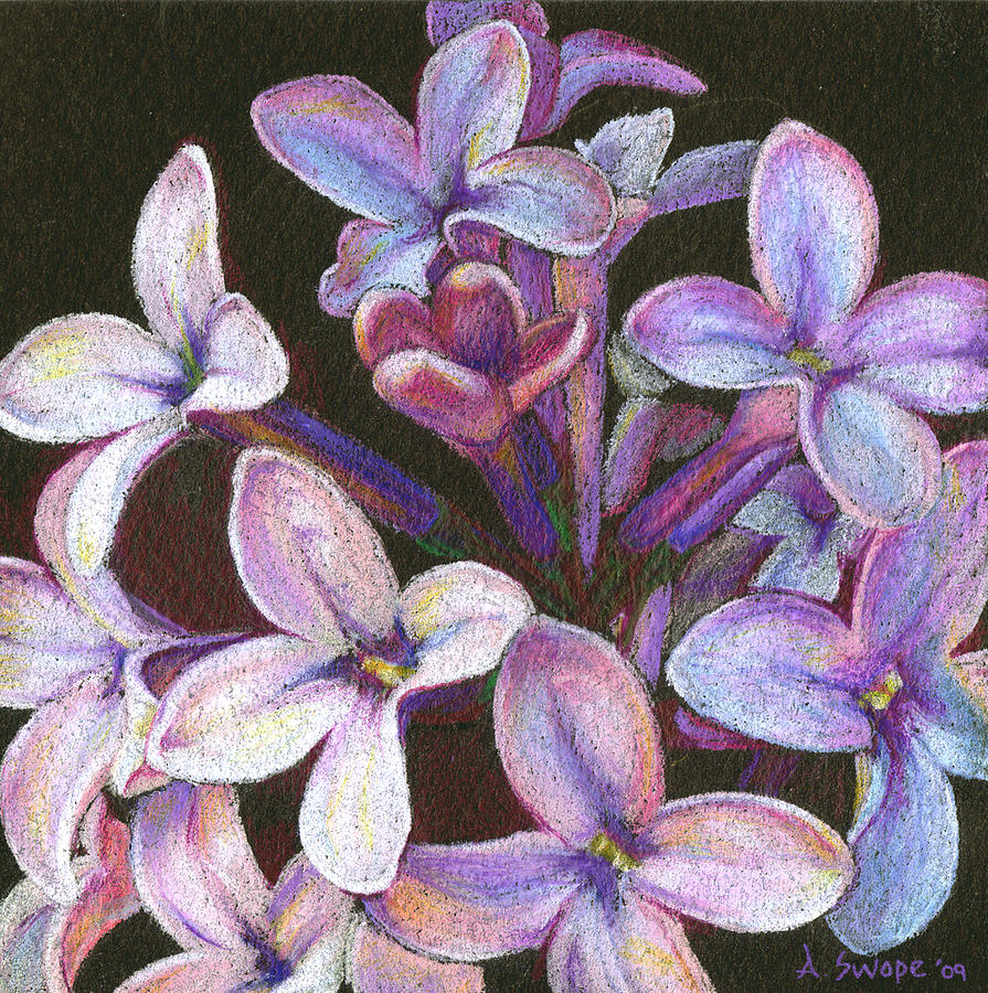 Flower Painting - Lilac 2 by Audi Swope