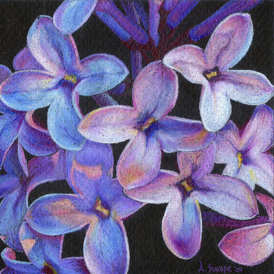 Flower Painting - Lilac 3 by Audi Swope