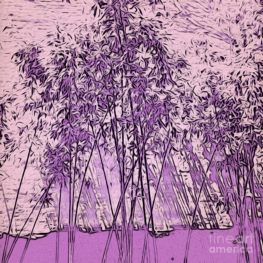 Lilac Bamboo Garden by Onedayoneimage Photography