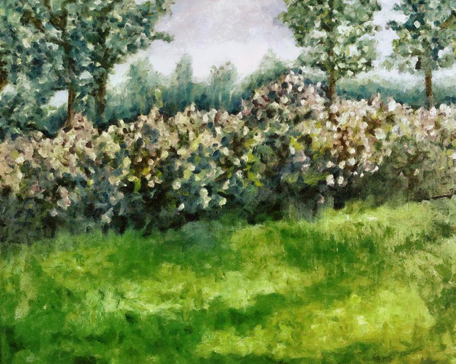 Spring Painting - Lilac Bushes In Springtime by Michelle Calkins