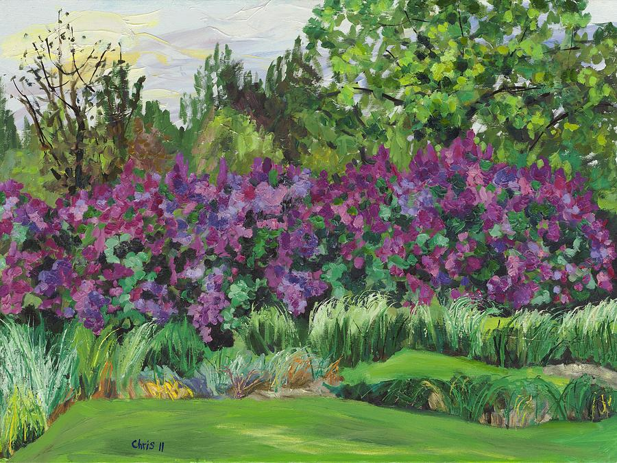 Lilacs at ornamental grass garden painting by christina for Large grasses for gardens