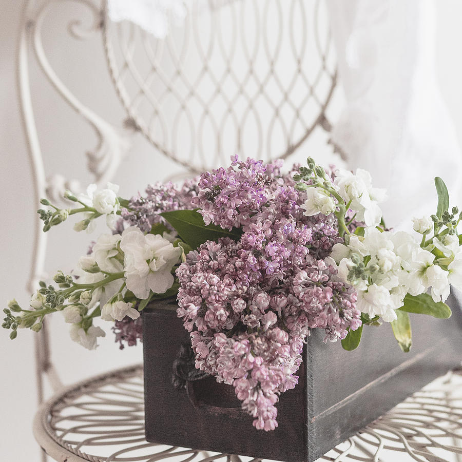 White Photograph - Lilacs by Beverly Cazzell