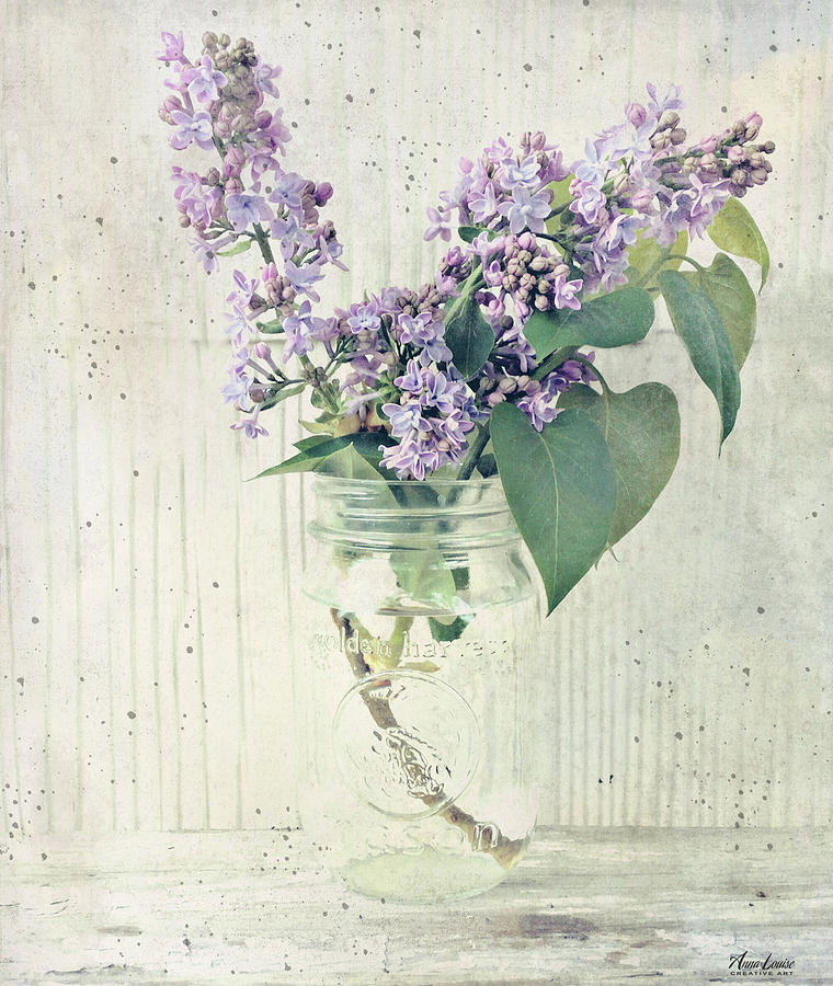 Lilacs In Old Jar by Anna Louise