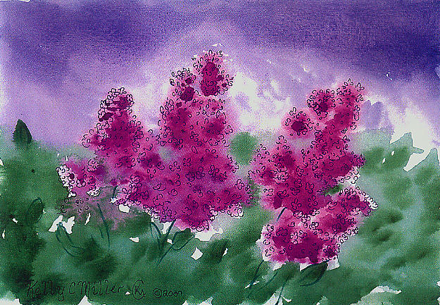 Lilac Painting - Lilacs by Kelly Miller