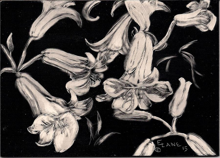White Lilies Drawing - Lilies Black And White II by Elizabeth Lane