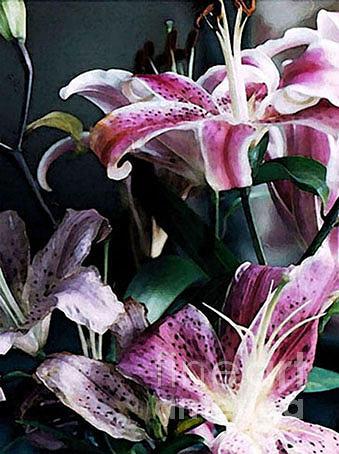 Lilies Photograph - Lilies IIi by Paola De Giovanni
