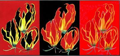Lilies That Climb -3 In One Mixed Media by Carliss Mora