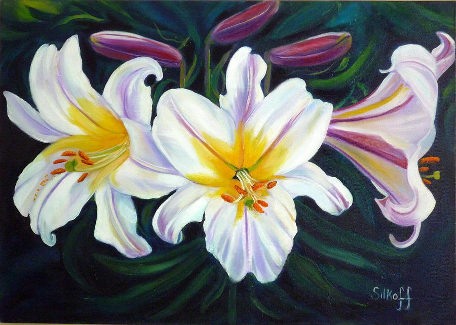 Lilies Painting - Lilium Regale by Janet Silkoff
