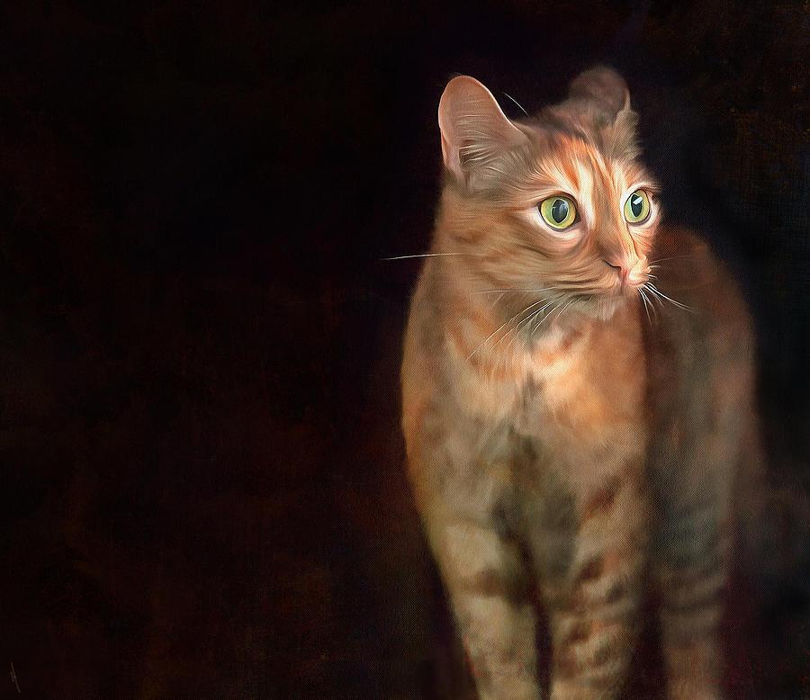 Cat Digital Art - Lilly Standing At The Door by Hazel Billingsley