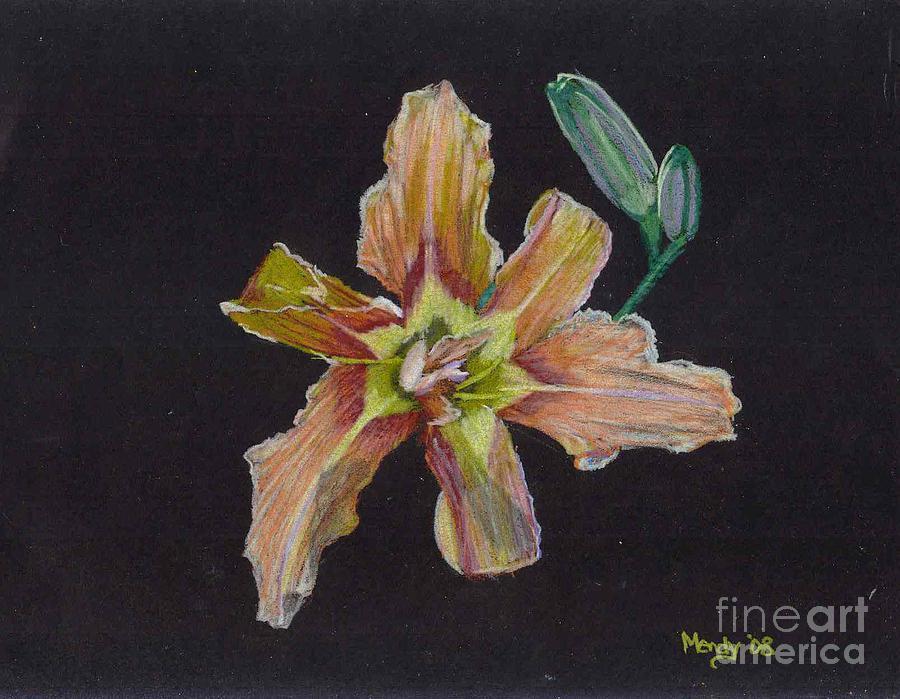 Lily Pastel - Lily 2 by Mendy Pedersen