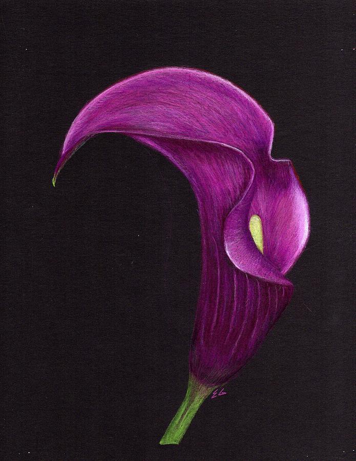 Lily Painting - Elegance by Ekta Gupta