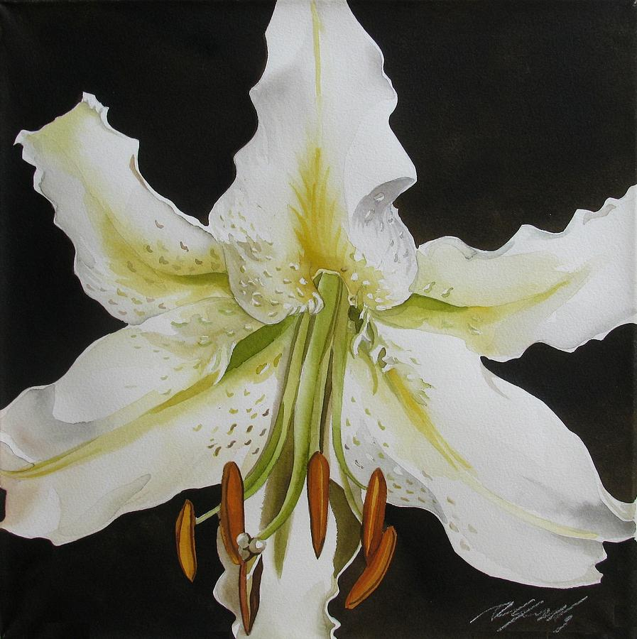Watercolor Painting - lily in White by Alfred Ng