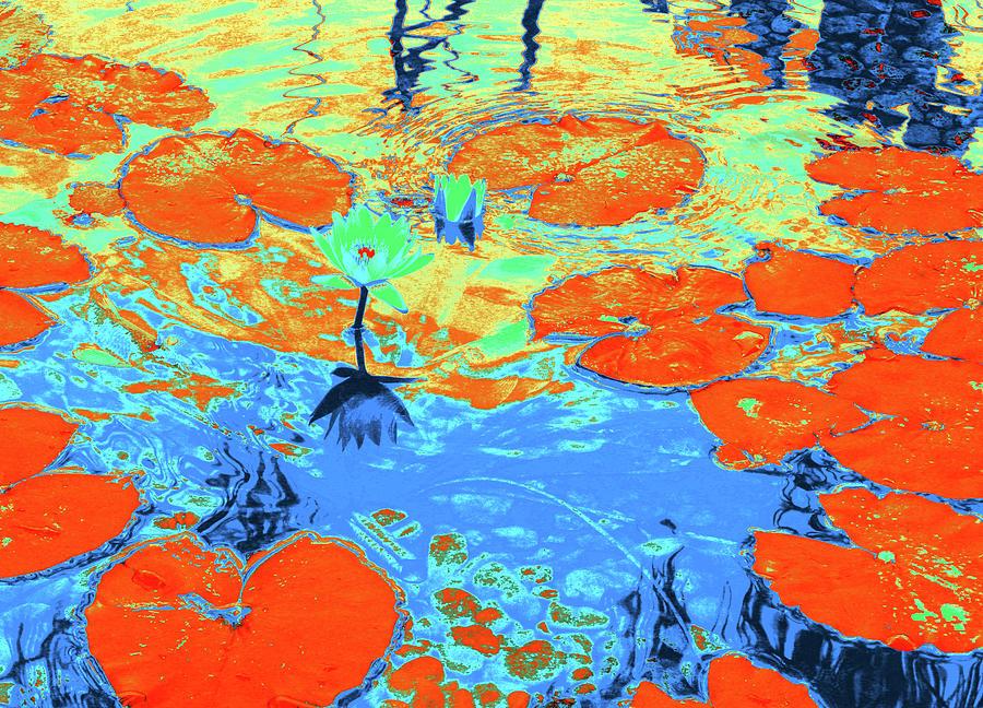Pond Photograph - Lily Pads And Koi 10 by Gary Bartoloni