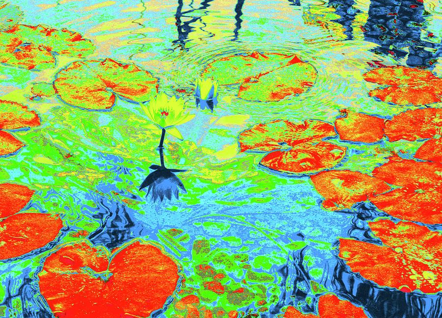 Pond Photograph - Lily Pads And Koi 20 by Gary Bartoloni
